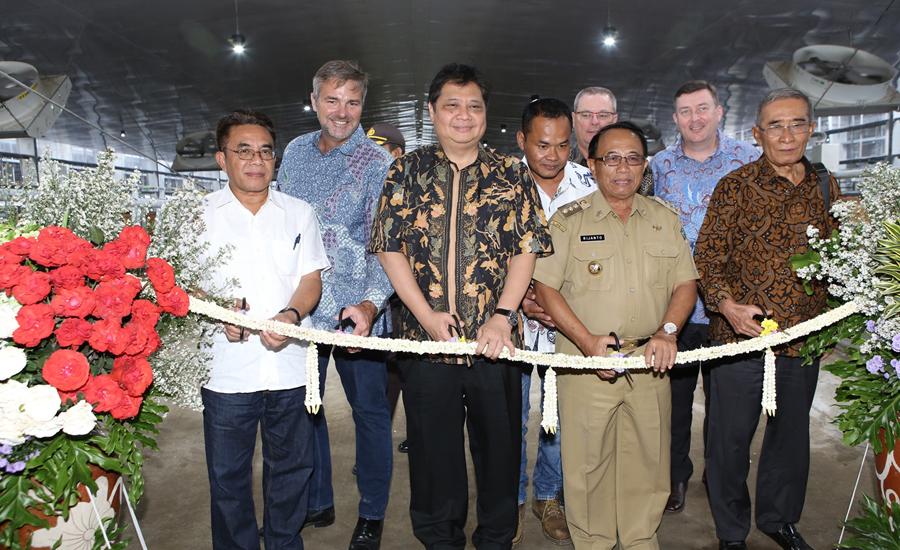 Greenfields Resmikan Peternakan Sapi Perah Terbesar di Indonesia